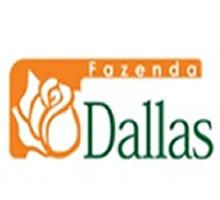 Fazenda Dallas